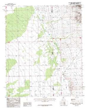San Simon Cienega topo map