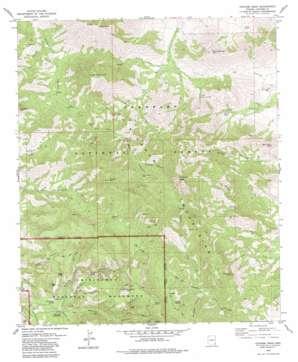Cochise Head topo map