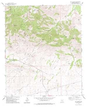 Dos Cabezas topo map