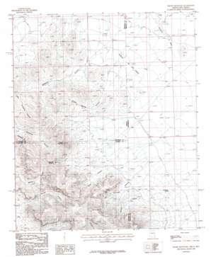 Engine Mountain topo map