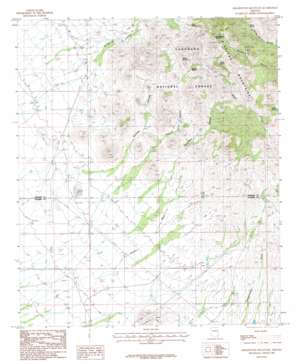 Greasewood Mountain topo map