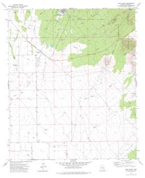 Fort Grant topo map