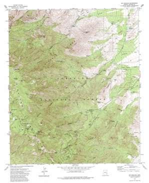 Mount Graham topo map