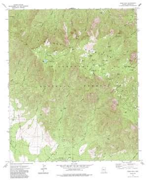 Webb Peak topo map