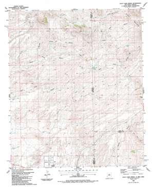 Goat Camp Spring topo map