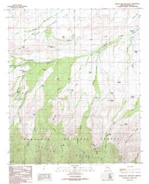 Shingle Mill Mountain topo map