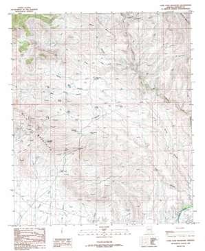 Lone Star Mountain topo map