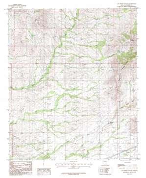 San Pedro Ranch topo map