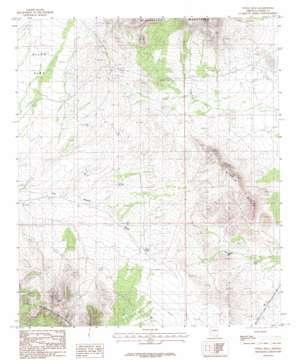 Steele Hills topo map