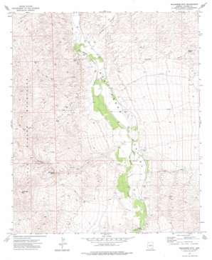 Wildhorse Mountain topo map