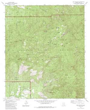 Mica Mountain topo map