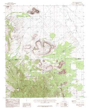 Reiley Peak topo map