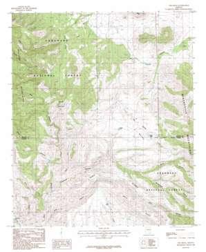 The Mesas topo map
