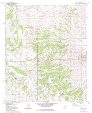 Redington topo map