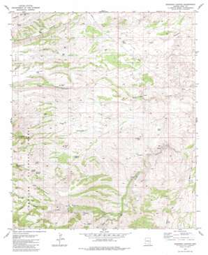 Buehman Canyon USGS topographic map 32110d5