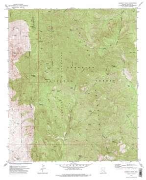 Bassett Peak topo map