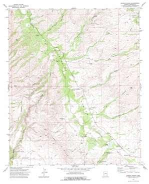 Eureka Ranch topo map