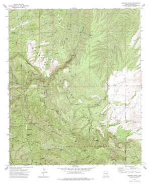 Kennedy Peak topo map