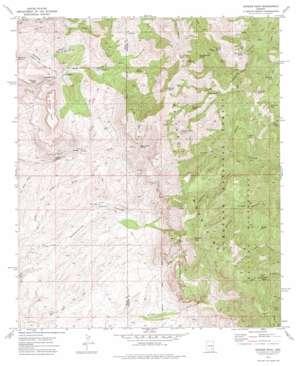 Rhodes Peak topo map