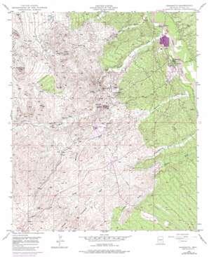 Mammoth topo map