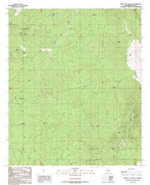 North Of Oracle topo map