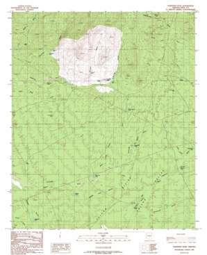 Fortified Peak topo map