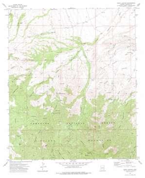 Tripp Canyon topo map