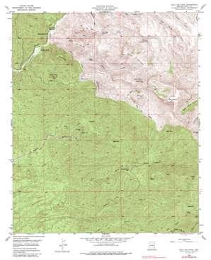 Holy Joe Peak topo map