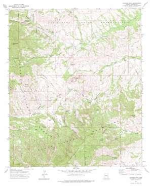 Jackson Mountain topo map