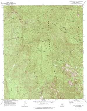 Cobre Grande Mountain topo map