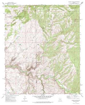 Booger Canyon topo map