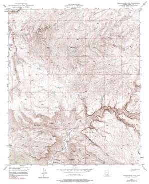 Brandenburg Mountain topo map