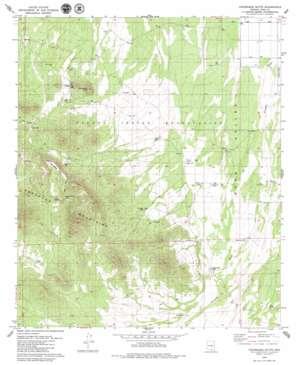 Cocoraque Butte topo map