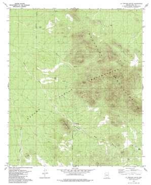 La Tortuga Butte topo map