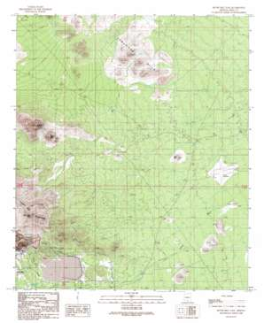 Silver Bell East topo map
