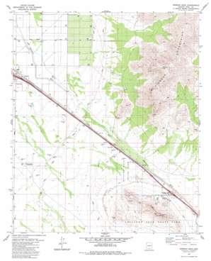 Newman Peak topo map