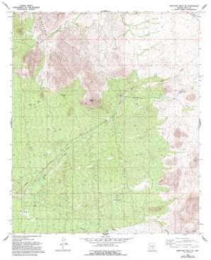 Ninetysix Hills SE USGS topographic map 32111g1