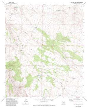 Ninetysix Hills Ne topo map
