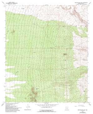 Ninetysix Hills Nw topo map