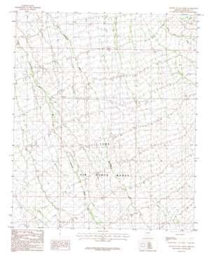 South Of Gila Bend topo map
