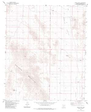 Conley Well topo map