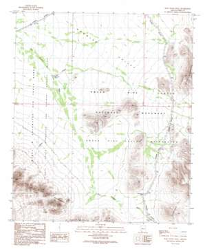 Pozo Nuevo Well topo map