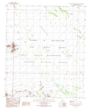 North of Agua Dulce Mountains USGS topographic map 32113b2