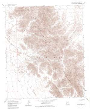 Fortuna Mine topo map