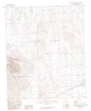 Red Bluff Mountain East topo map