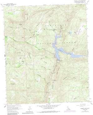 Barrett Lake topo map