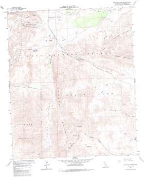 Sweeney Pass topo map