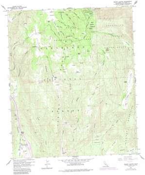 Mount Laguna topo map
