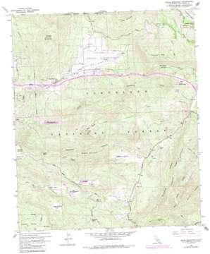 Viejas Mountain topo map