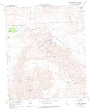 Agua Caliente Springs topo map